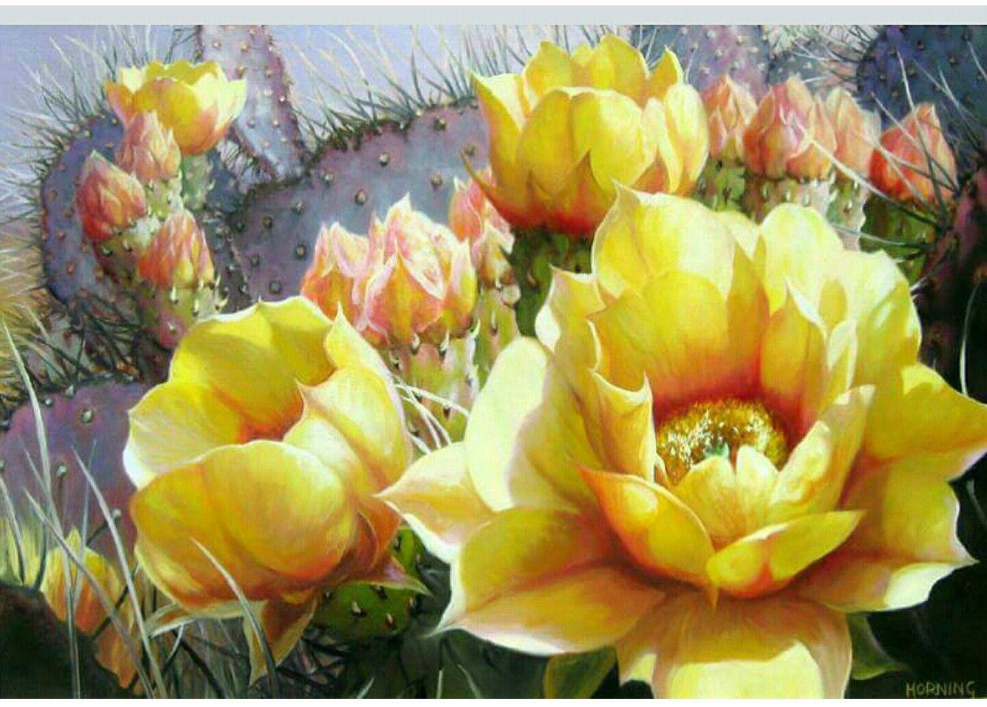 Epingle Par Mireille Drissi Beffara Sur Fleurs Avec Images