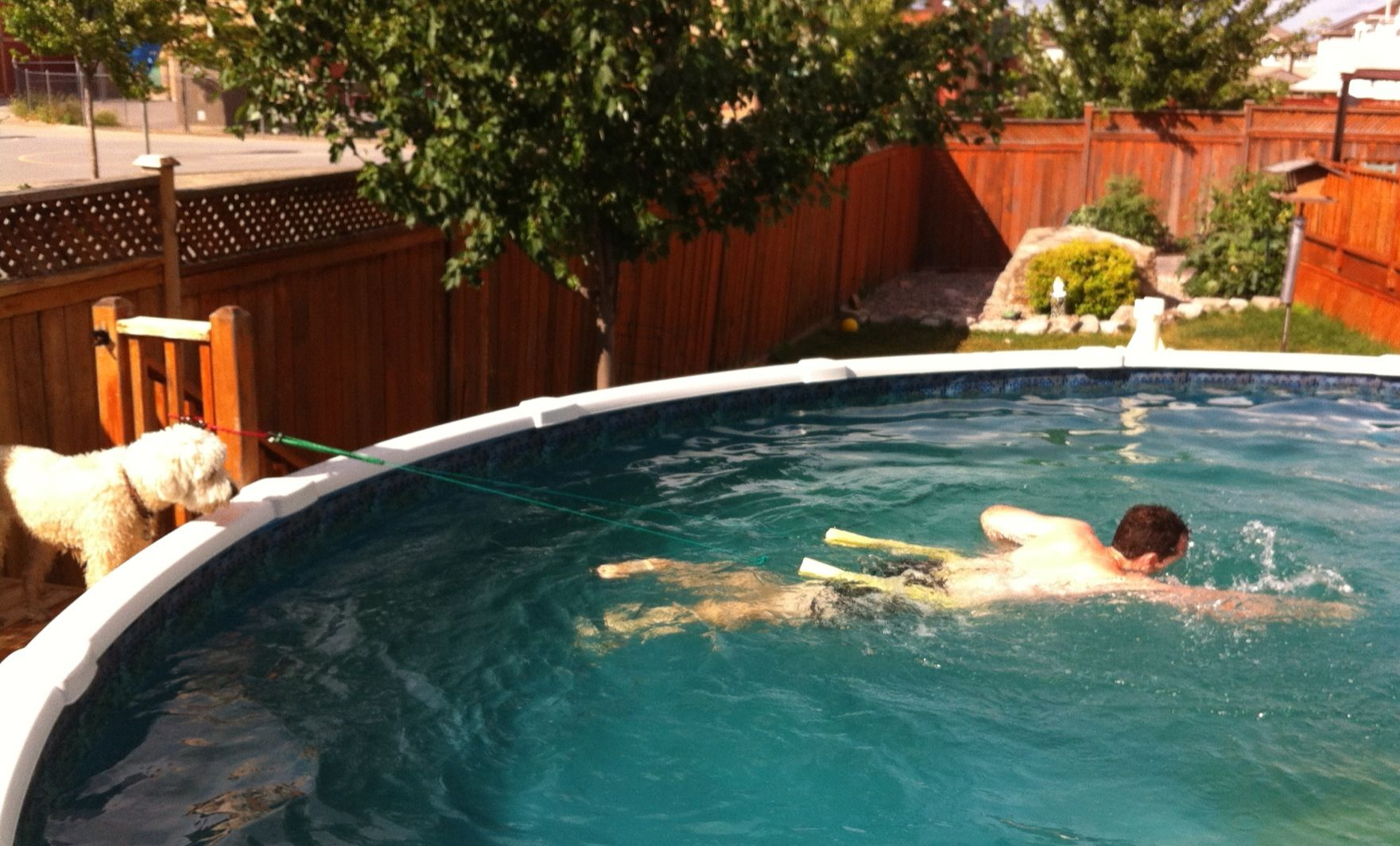 LPT: Use a pool noodle, string, and a few bungee cords to ...