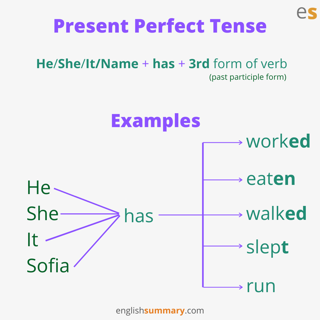 In Present Perfect Tense We Use Has With He She It