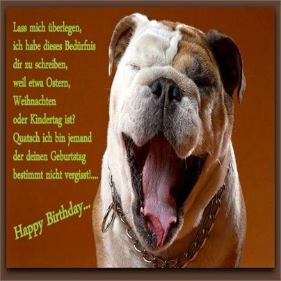 Wir Wunschen Dir Alles Gute Zum Geburtstag Gluckliche Hunde