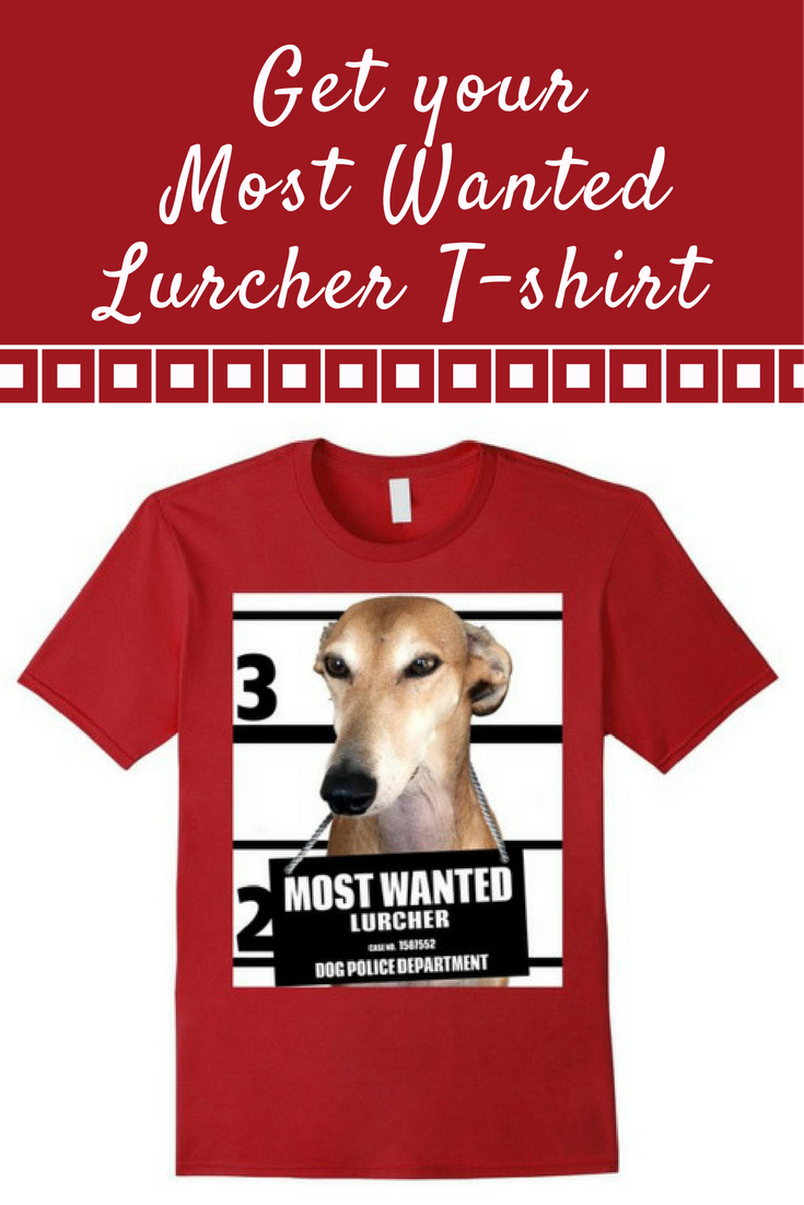Most Wanted Lurcher T-shirt - Dog Tee Shirts -- 100% Cotton. Imported. Machine wash cold with like colors, dry low heat.  Anvil relaxed fit, black, brown, baby blue, white, red (cranberry), crew neck tee, sayings, quotes, unisex, man, women, girls, boys. Lightweight, Classic fit, TearAway label, Double-needle sleeve and bottom hem. Dog Lover t shirts, Dog Mugshot t-shirts, Lurcher tee shirts, with graphics. 4.5 oz 100% Combed Ringspun Cotton, machine wash cold with like colors, dry low heat