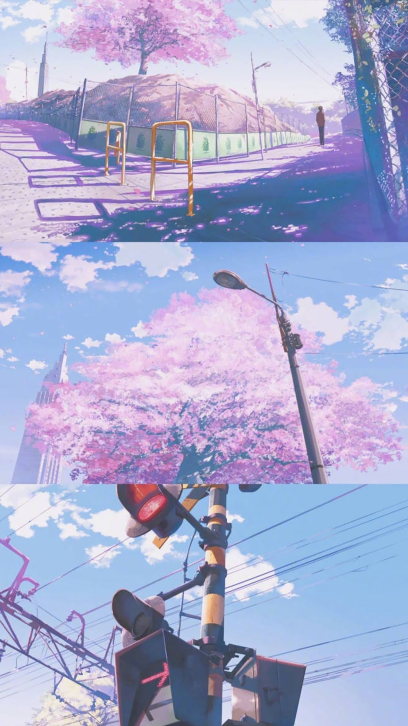 Cherry Blossoms Wallpaper Anime Scenery Wallpaper Anime Backgrounds Wallpapers Anime Scenery