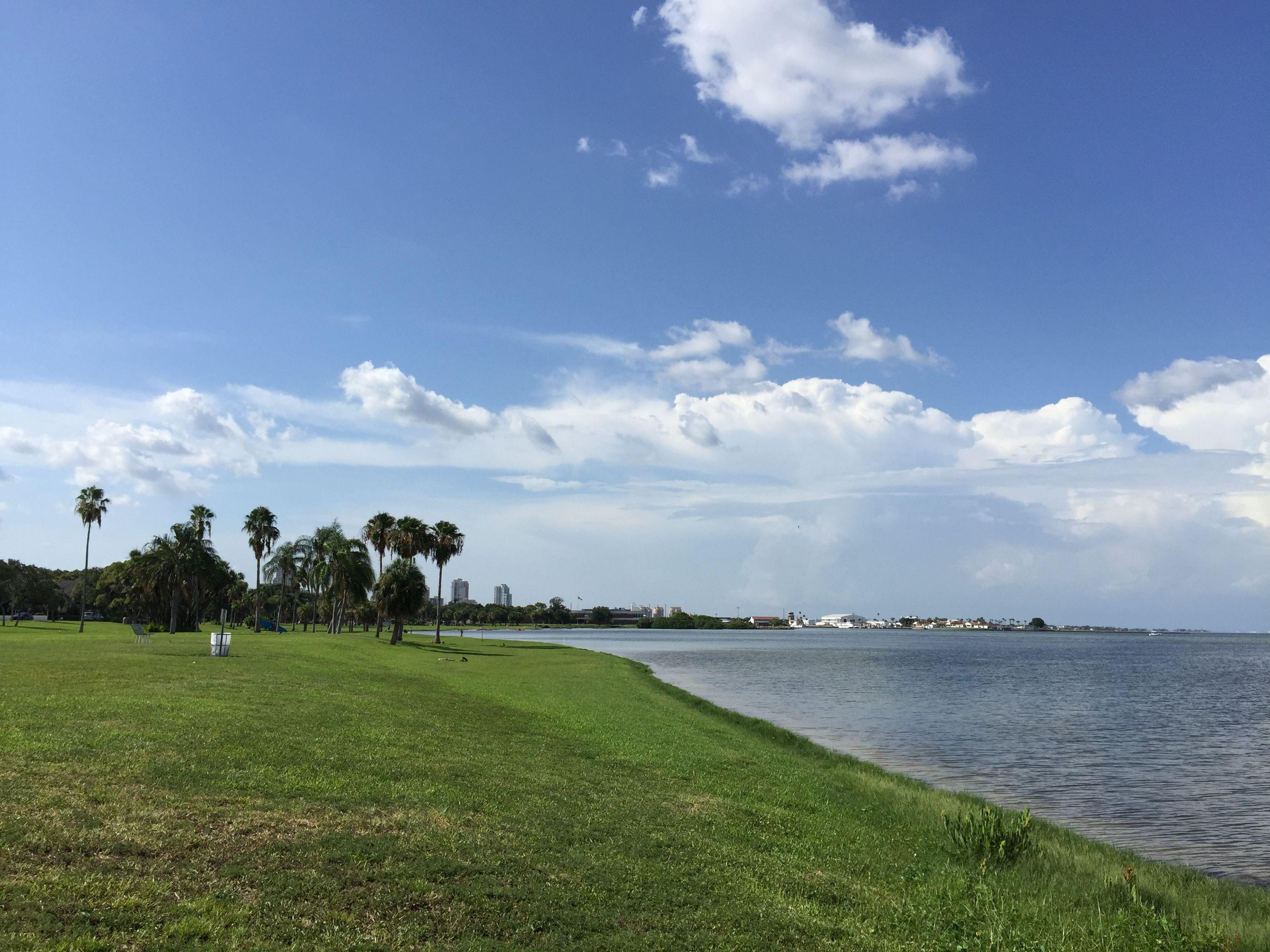 Beautiful day at Lassing Park in StPete! St. Petersburg