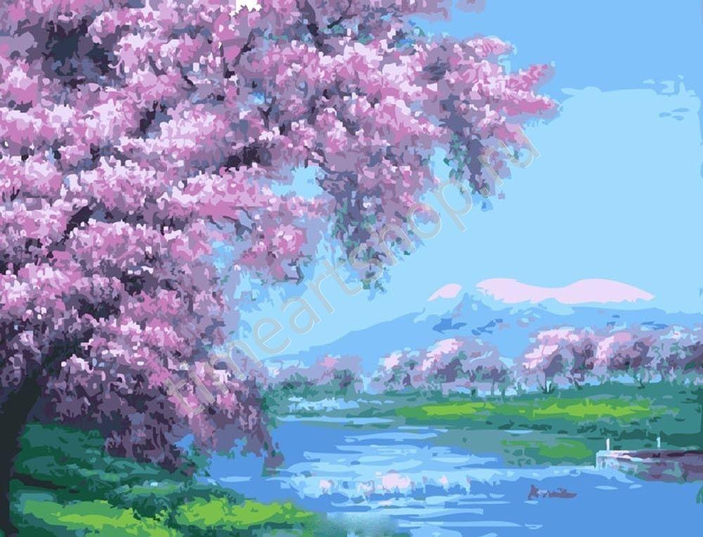 Цветение вишни, картины раскраски по номерам, своими ...