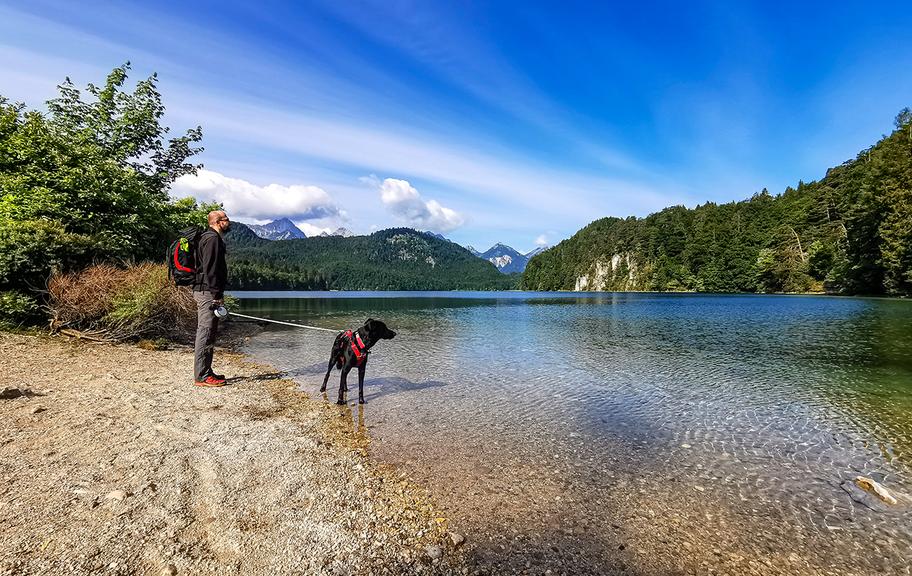 Rund Um Den Alpsee Schwangau Ostallgau Die Bergfreaks Urlaub Mit Hund In 2020 See Urlaub Urlaub Mit Hund
