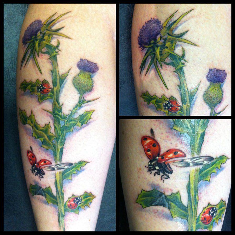 Thistle Tattoo Google Search Ladybird Tattoo Tattoos Thistle Tattoo