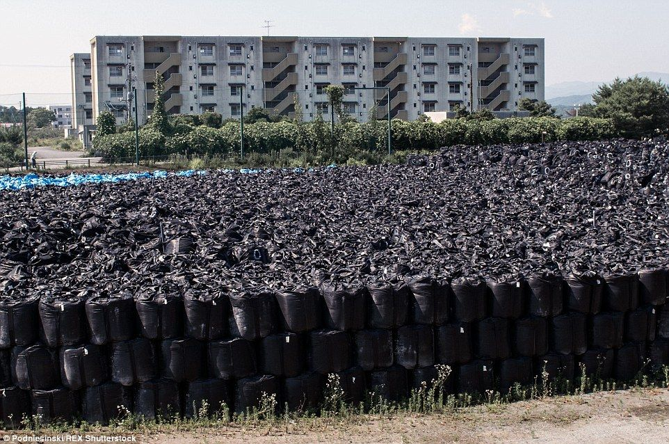 To save space, the radioactive bags of soil are stacked on top of one another. Some 120,00...