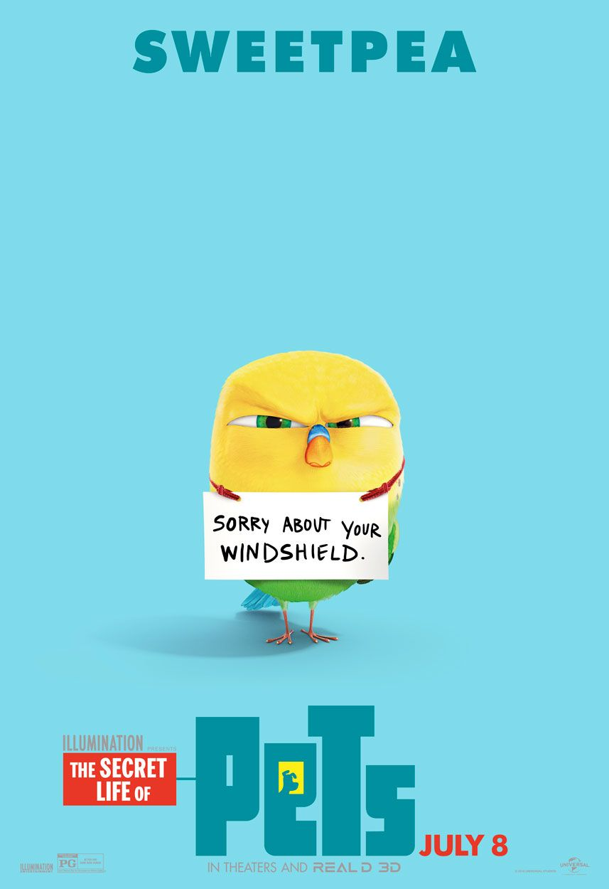 Sweetpea The Budgie Bird Is Not So Sorry About Your Windshield The Secret Life Of Pets In Theaters July 8 Secret Life Of Pets Pets Movie Secret Life
