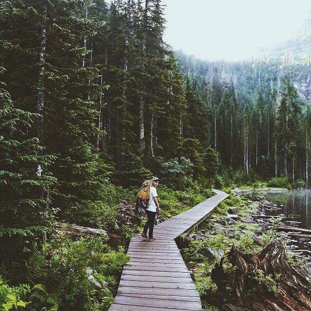 wildernessy