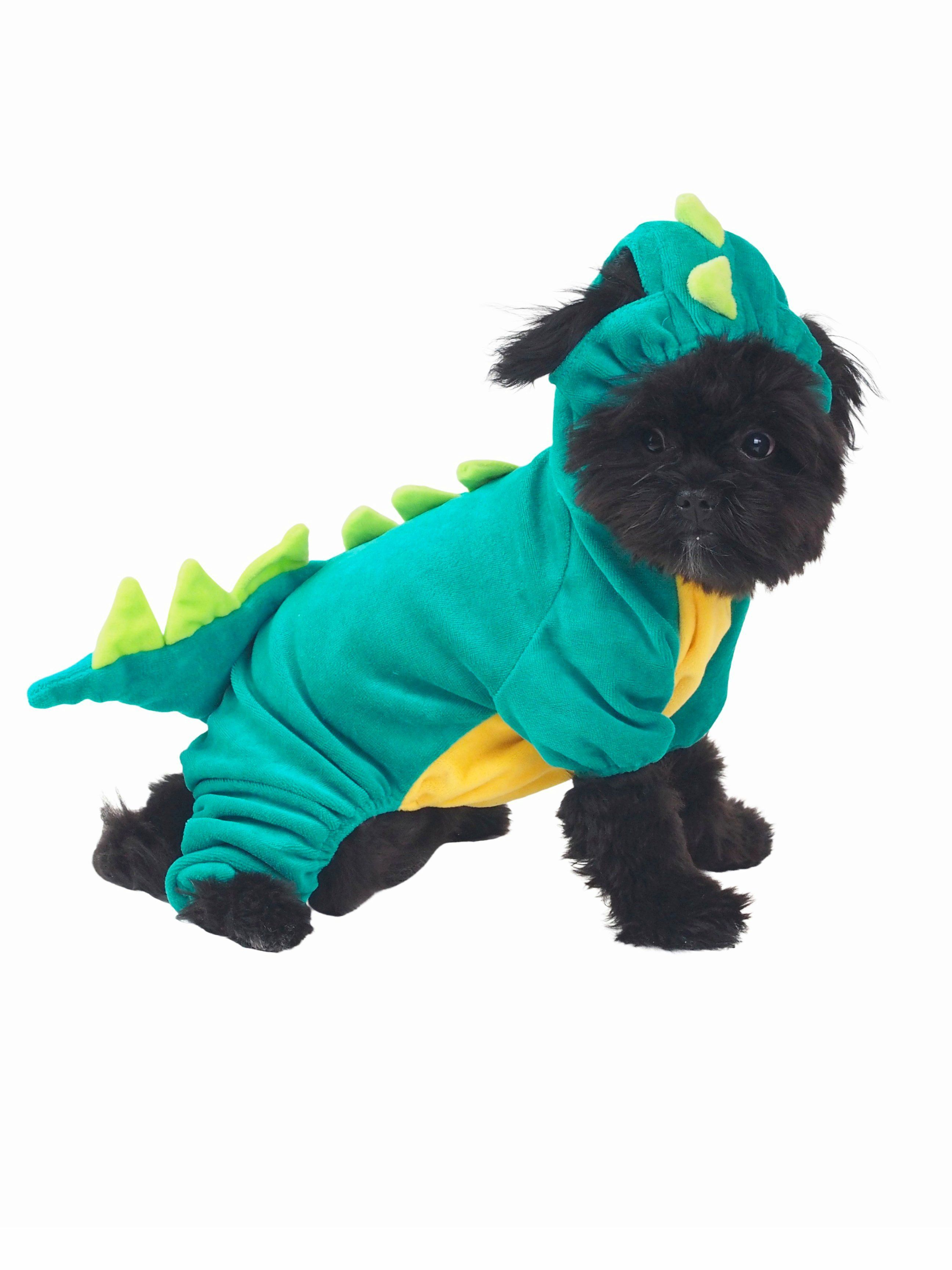 How Much Was Spent On Halloween Costumes For Pets 2020 Spikey Dragon Dog Costume   Funny dog costumes are our thing here