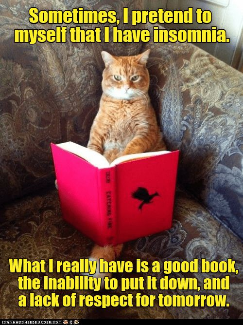 Pin By Jdolly M On Read A Good Book Lately Cute Animal Memes Funny Animal Memes Funny Cat Memes