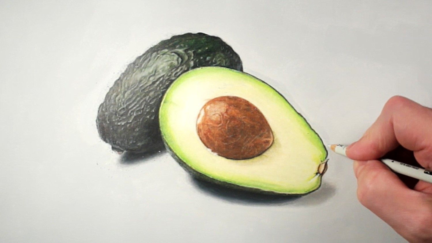 Ripe avocado drawing with colored pencils. Realistic