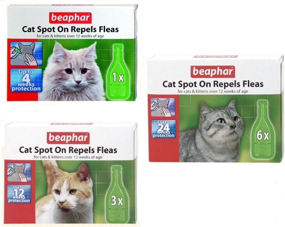 Beaphar Cat Spot On With Plant Extracts Margosa Which Naturally Repel Fleas Ebay Fleas Flea Prevention Cats