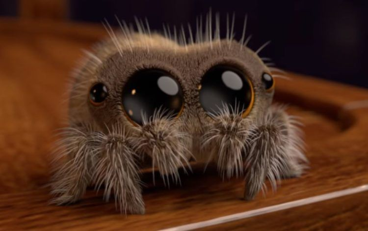 Adorable Animated Spider Named Lucas Is So Cute Even Arachnophobes Will Smile Lucas The Spider Spider Drawing Cute Fantasy Creatures