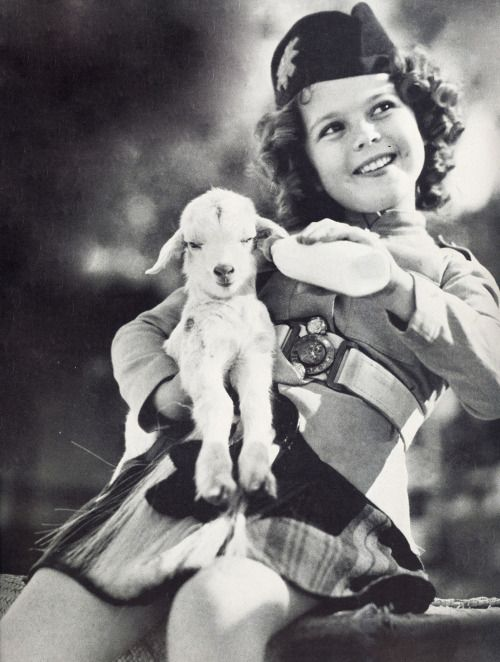 signorelli-girl: Wee Willie Winkie, 1937.