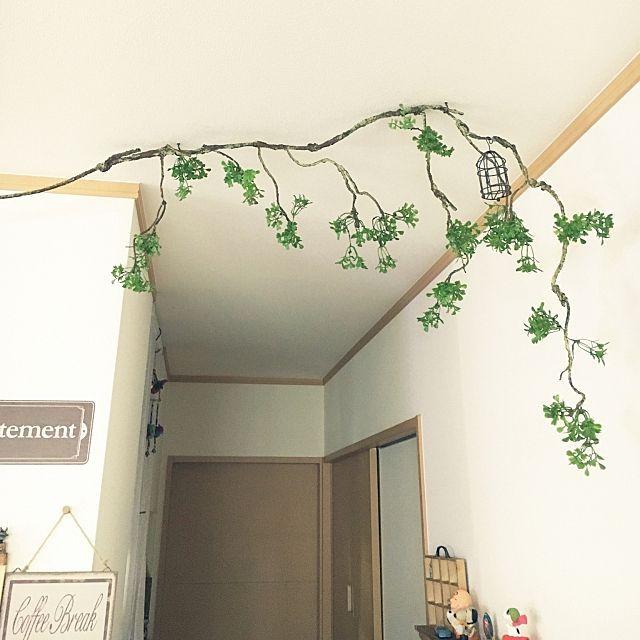 壁 天井 セリアの雑貨 鳥かご ねじねじ枝 ねじねじ枝ロング などの