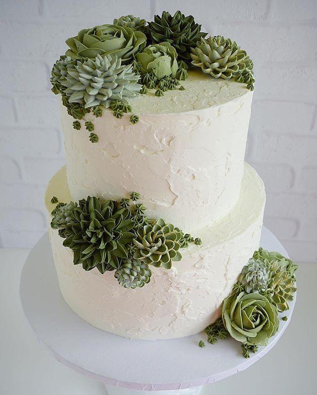Succulent Cake Herzhafte Kuchen Tolle Kuchen Cupcake Kuchen