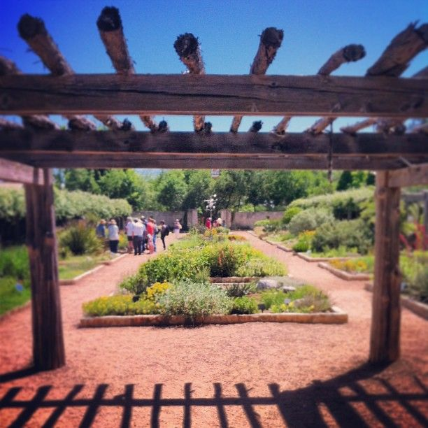 Walk Through The Grounds At The Wildflower Center To See