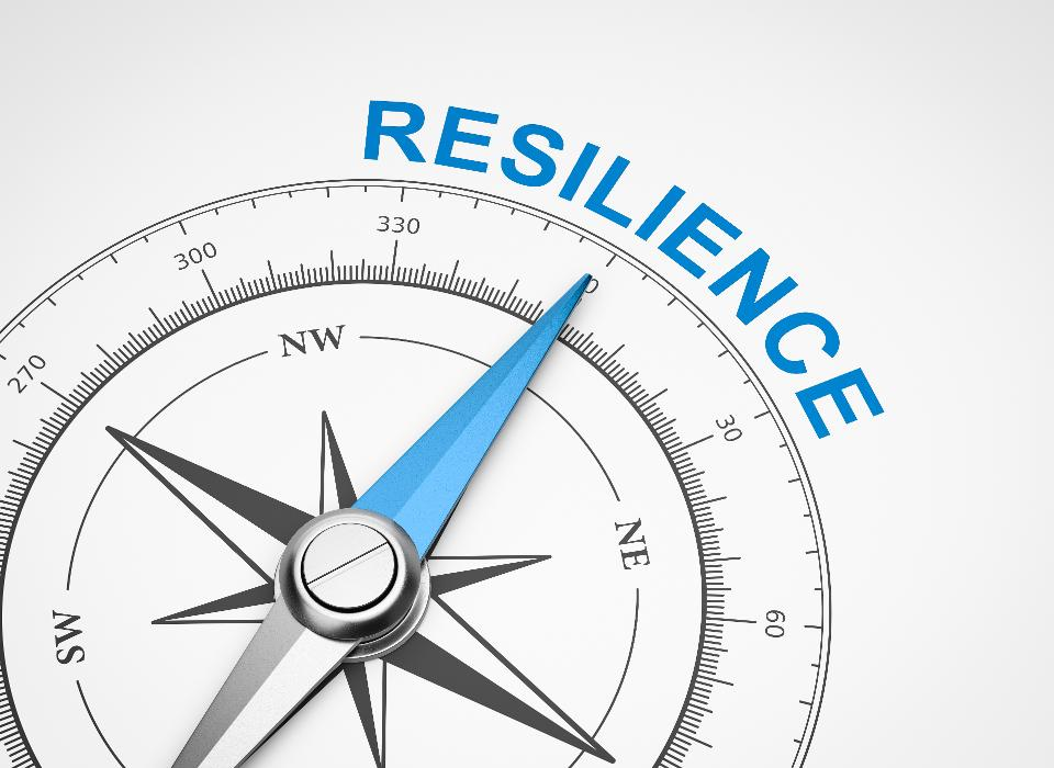 How To Build Your Leadership Resilience In 2020 Magnetic Compass Health Words Compass Needle