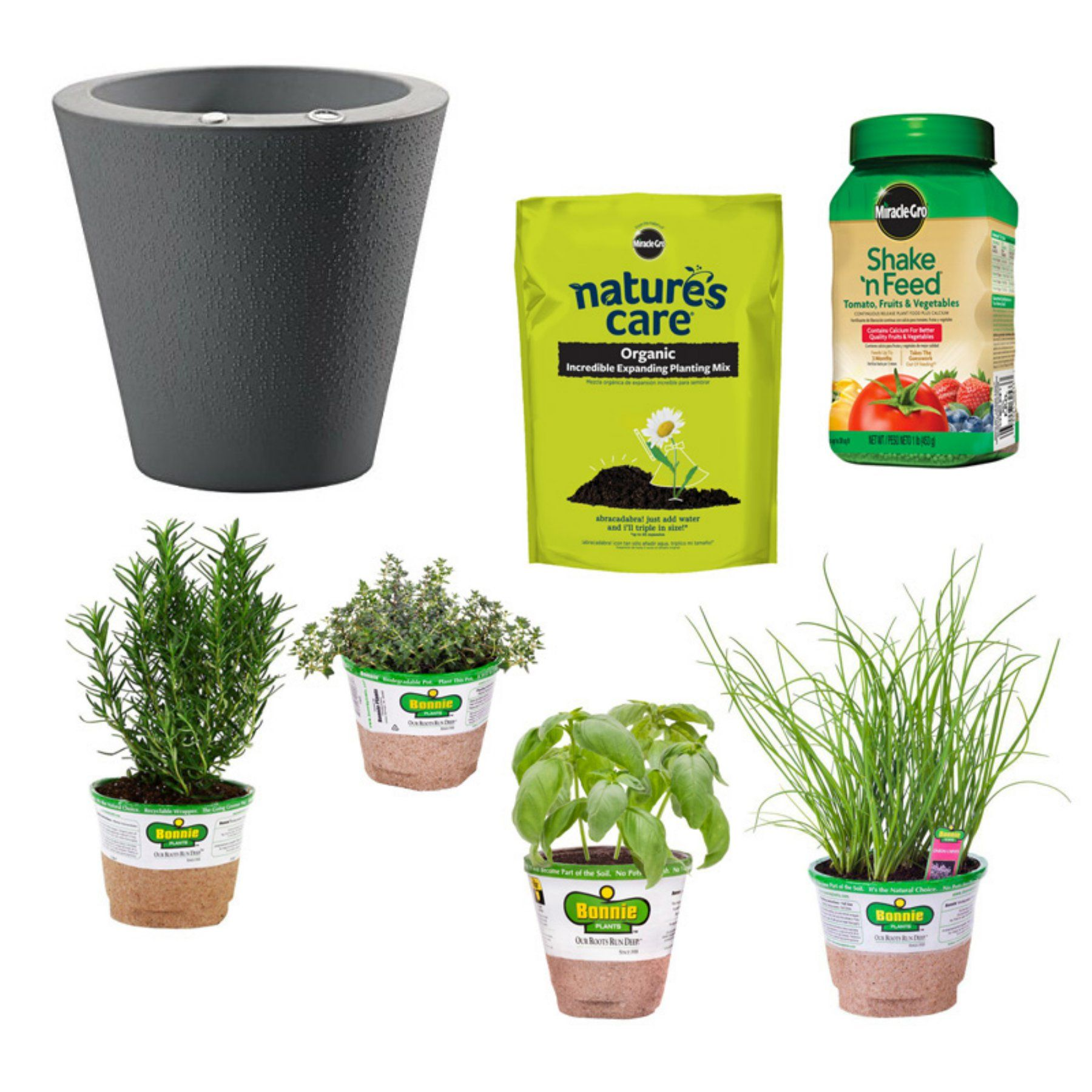 Bonnie Plants Outdoor Self Watering Beginner Herb Garden Set