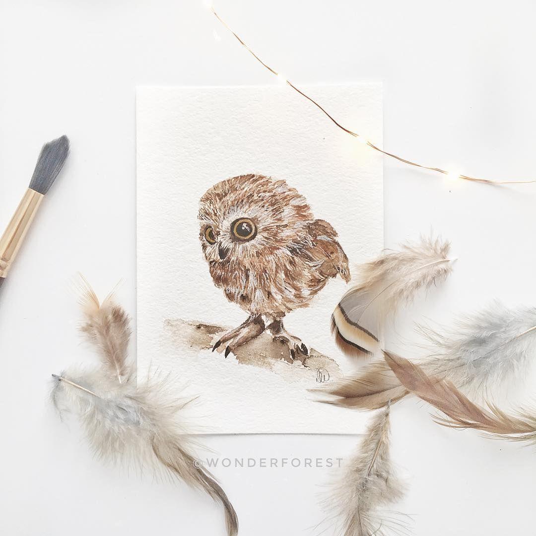 Watercolour Pygmy Owl Tutorial | Wonder Forest