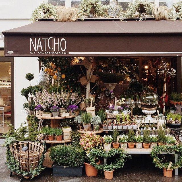 Pin de Inspire✨ en Flowers | Pinterest | Vivero, Tiendas de flores ...