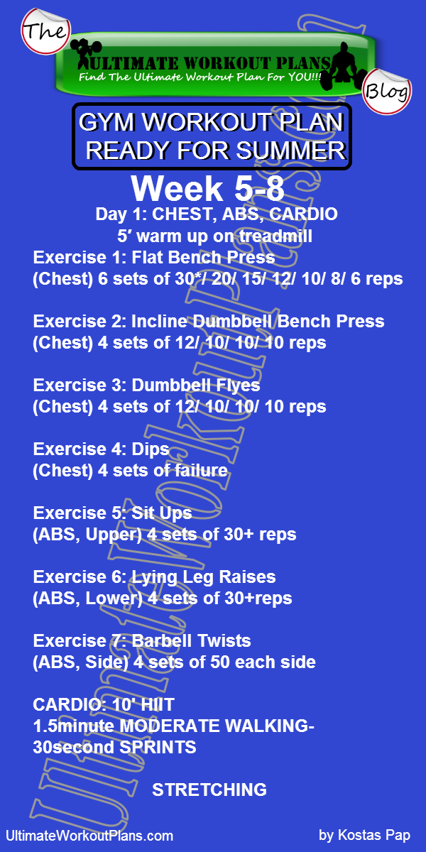 2 GYM WORKOUT PLAN READY FOR SUMMER MEN DAY 1 CHEST ABS CARDIO UltimateWorkoutPlans
