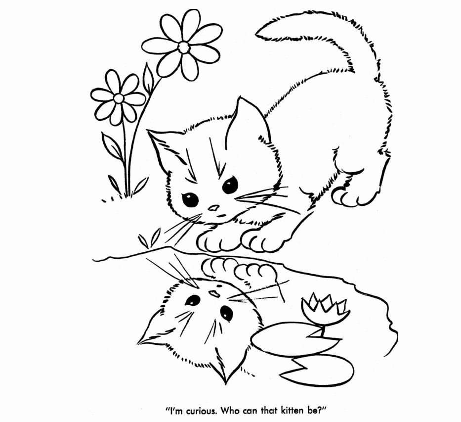 Drawing Book Of Cats Or Kittens For Preschoolers Beautiful Baby Coloring Sheets 07 Color Me Unicorn Coloring Pages Animal Coloring Pages Cat Coloring Page