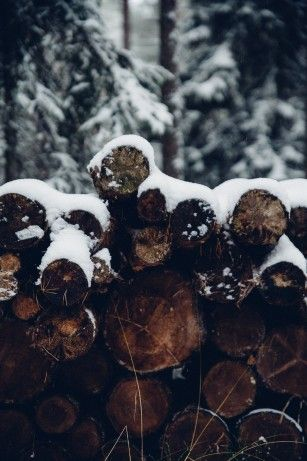 Voor alle mensen die de winter de fijnste tijd van het jaar vinden