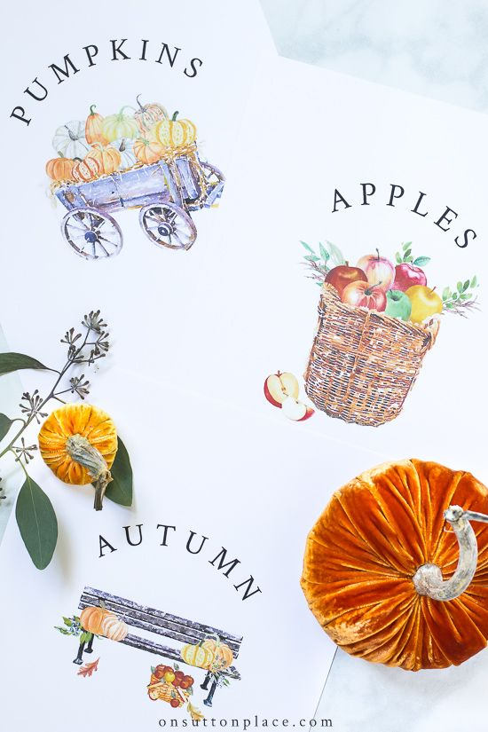 Use these new free fall printables to easily make your own DIY wall art. Just download and print for instant autumn decor! #freeprintable #fall #falldecor #fallprintable #autumn #apples #pumpkins #wallart #falldecorideas