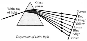 NCERT Solutions for Class 10 Science Chapter 11 Human Eye