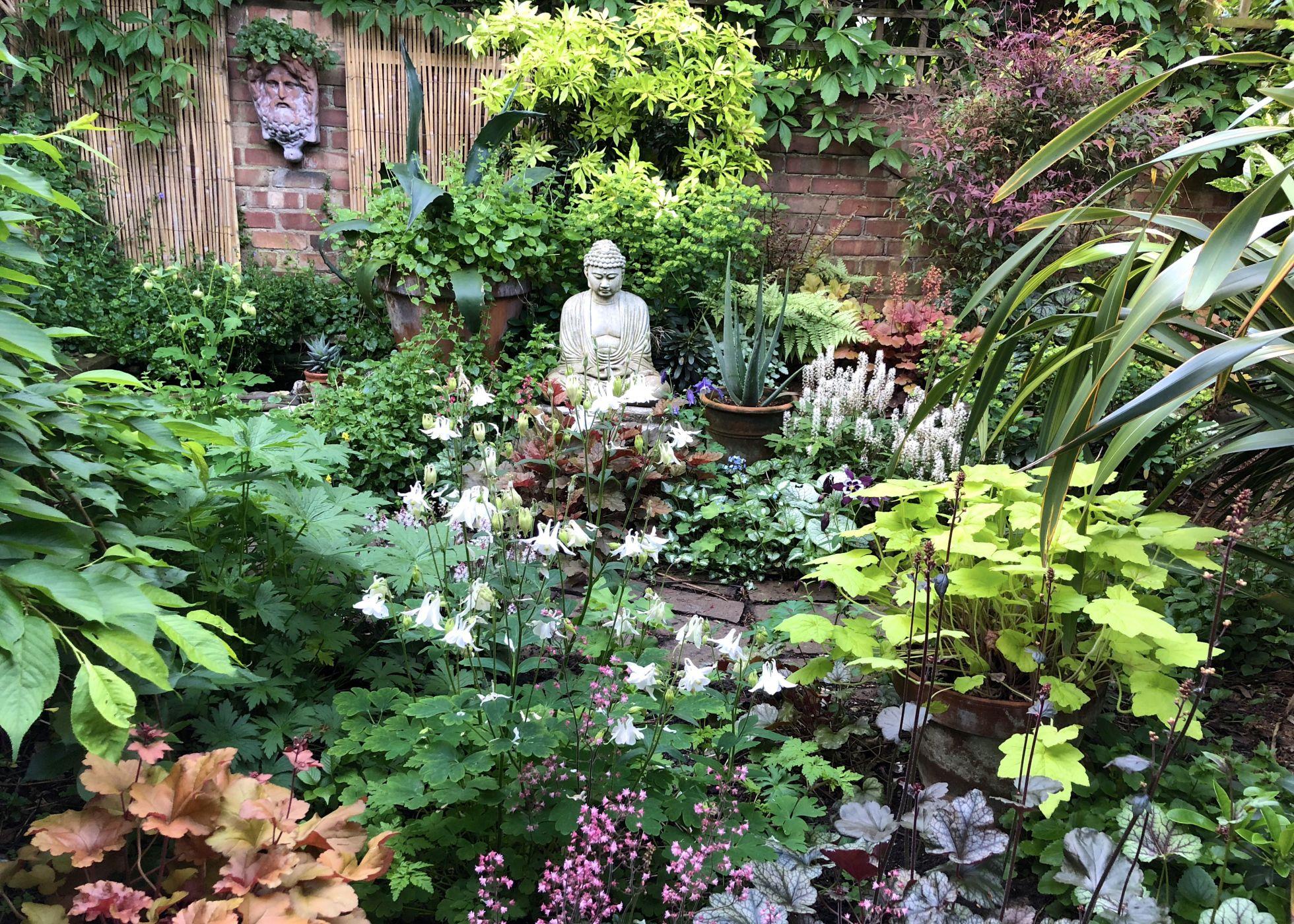 Ten Top Tips for Small, Shady Urban Gardens - The ...