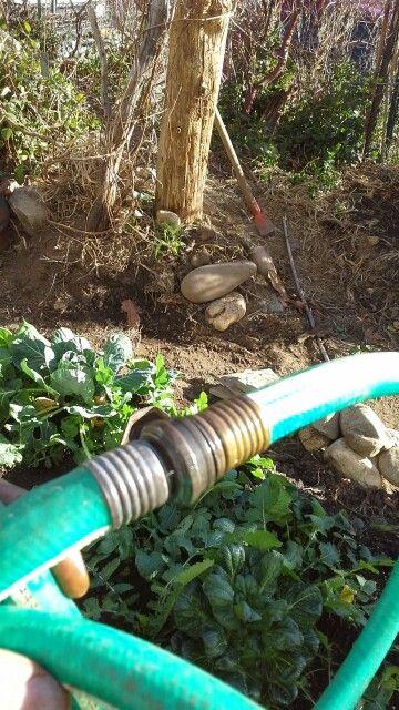 Keep all ends of the hose clean, says Farmer Ragnar.