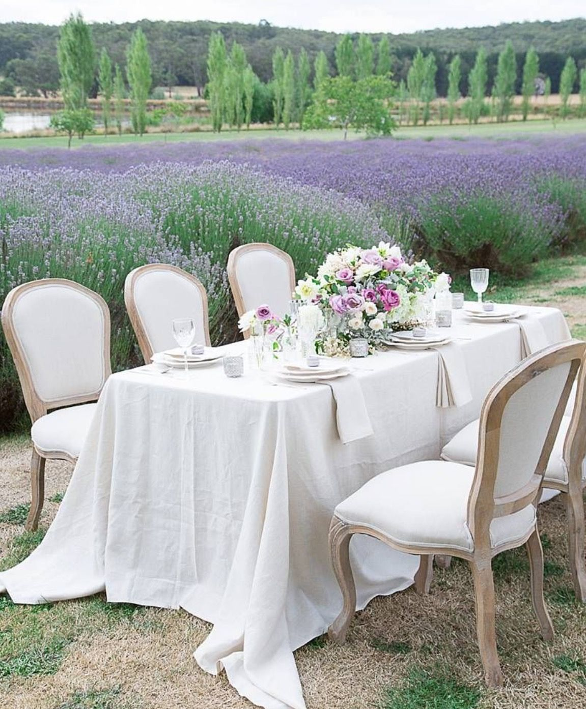 Pin by Leigh Reyne on Let\'s celebrate   Pinterest   Lavender, Dining ...