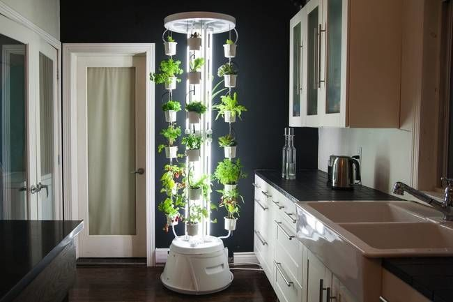 Indoor Hydroponic Gardens  Hydroponics Hydroponic Grow Systems And