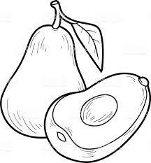 Resultado De Imagem Para Fruta Abacate Para Colorir Com Imagens