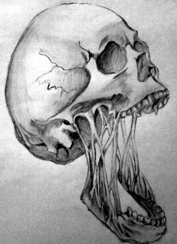Horror skull by angeli7 deviantart com on deviantart
