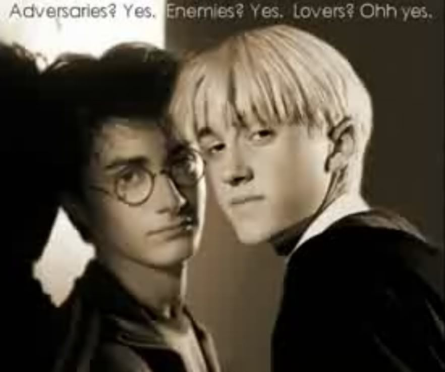 from Shawn harry potter is gay