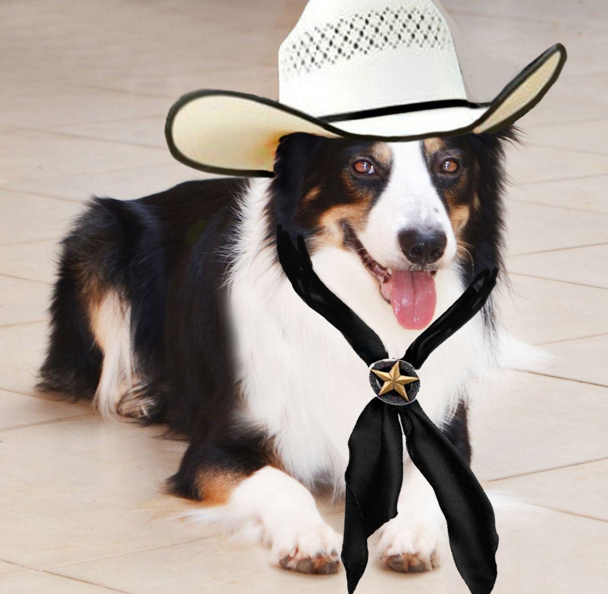 My precious cowboy