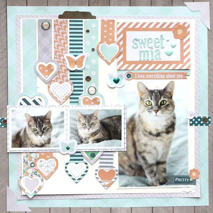 Image Result For Cat Scrapbook Pages Scrapbook Pinterest