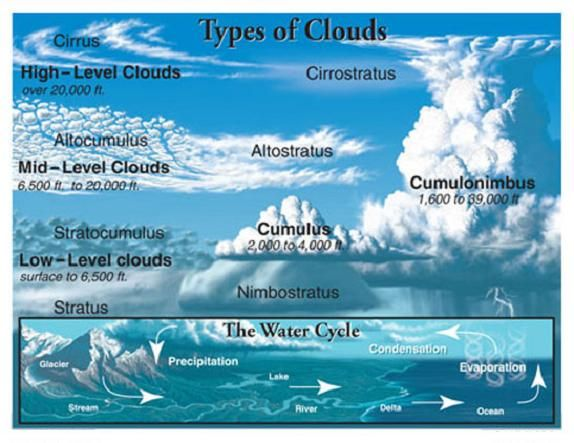 The Diff Types Of Clouds Cloud Type Clouds For Kids Clouds