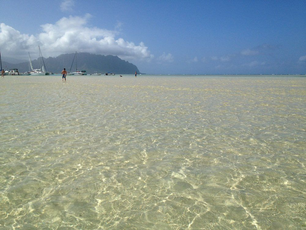 You Can Check Out The Kaneohe Sandbar Tide Chart Here Tides