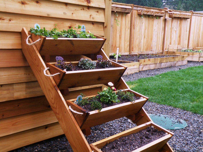 Strawberry, Herb, Tomato, and Flower gardening window box