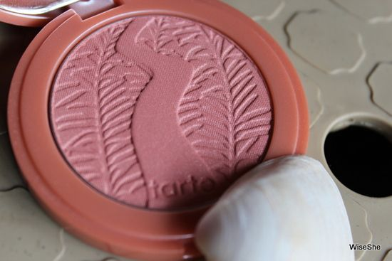 Photo of 5 Blushes Which Will Go Well With Pink Lipstick Shade