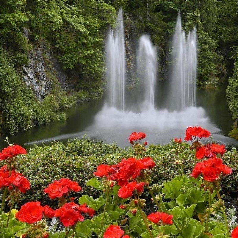 10 Best Waterfall And Flowers Wallpaper Full Hd 1080p For Pc Desktop Waterfall Waterfall Wallpaper Stairway To Heaven