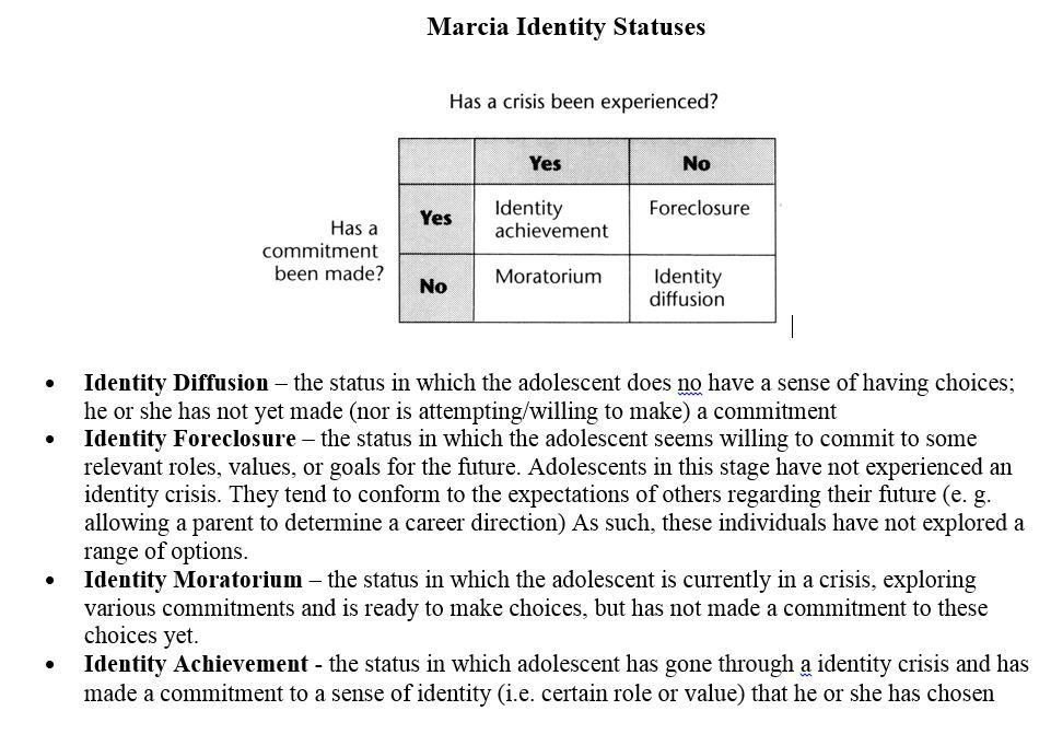 james marcia and definition of identity