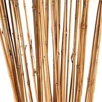 Decorative Branches Bamboo Sticks Branch Decor Bamboo Asian Home Decor