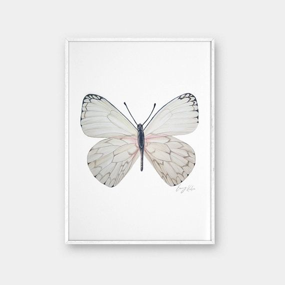Art print, Pencil drawing, Printable wall art, Butterfly ...