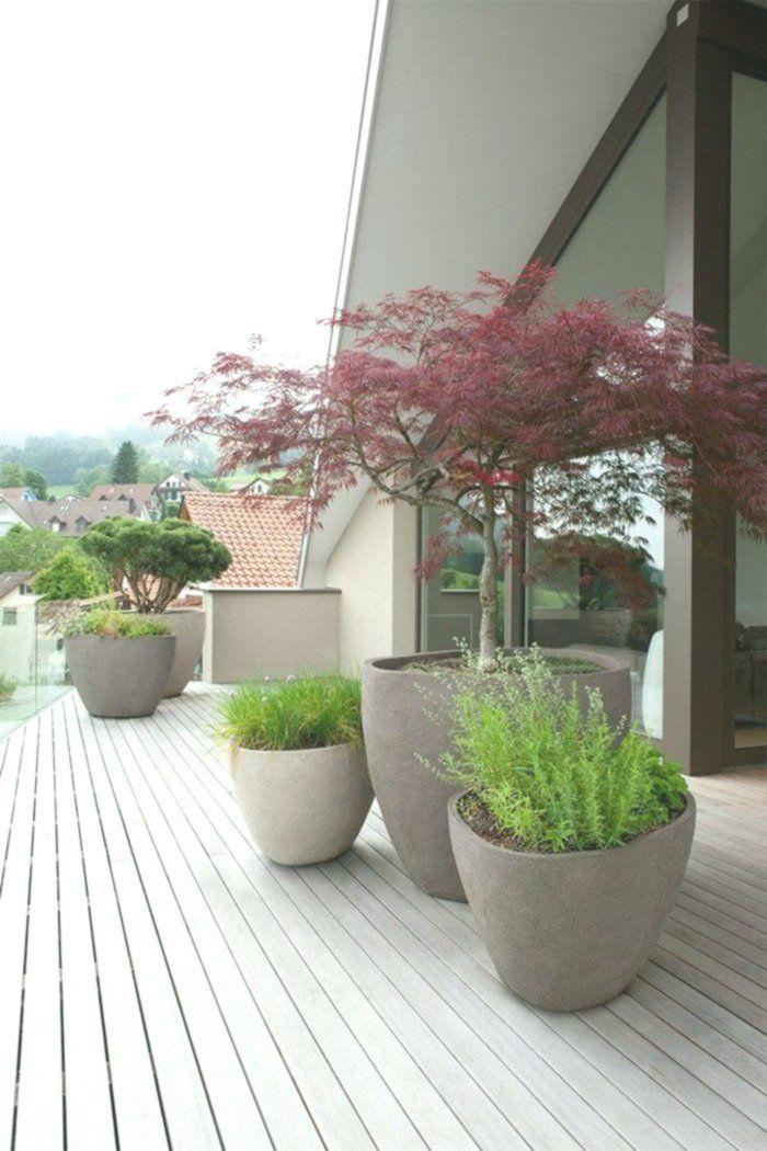 japanischer garten inspiration für eine harmonische on inspiring trends front yard landscaping ideas minimal budget id=57893