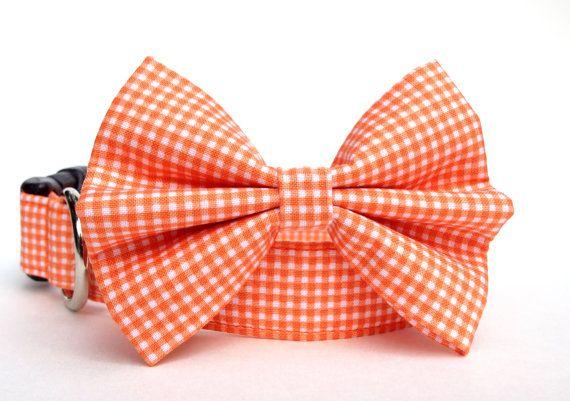 Orange Gingham Bow Tie Dog Collar / Gingham Dog door CreatureCollars